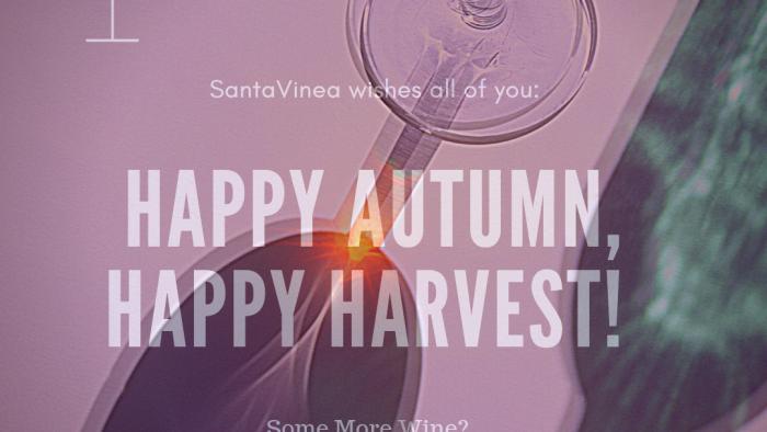 glass wine santavinea