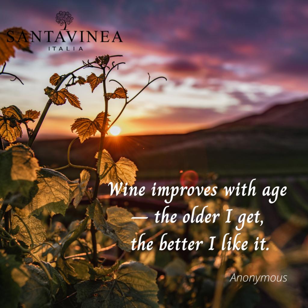 aforisma sul vino, tramonto